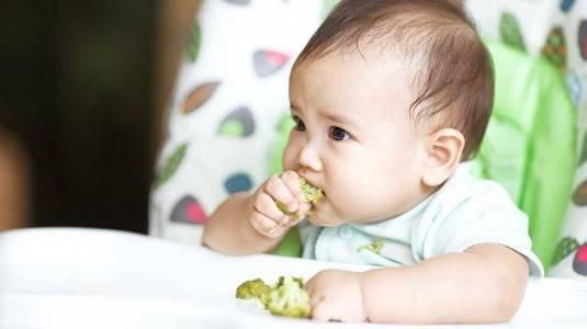 Kiat Agar si Kecil Mengembangkan Kebiasaan Makan Sehat